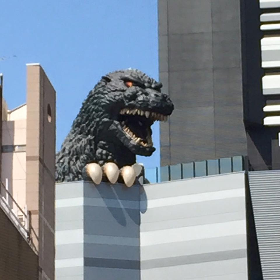 "Godzilla in Shinjuku now! Tokyo's newest cinema ""Toho Cinema"" installed a massive Godzilla head on its roof, attracting smartphone clicking tourists. They opened just recently on the 17th of April. Above the cinema is Hotel Gracery which also just opened on the 24th of April. Some of their rooms are Godzilla themed so you'll be waking up to this internationally beloved city destroying monster!"