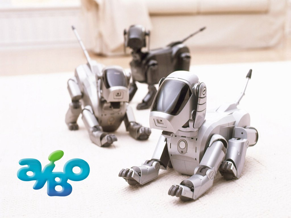 Joint funeral for robot dog Aibo