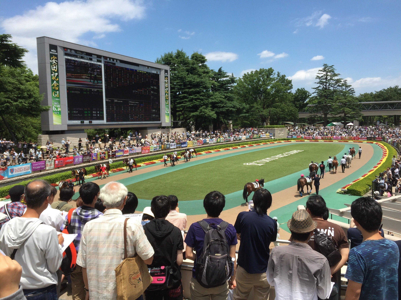 Day trip to Tokyo Horse Racecourse