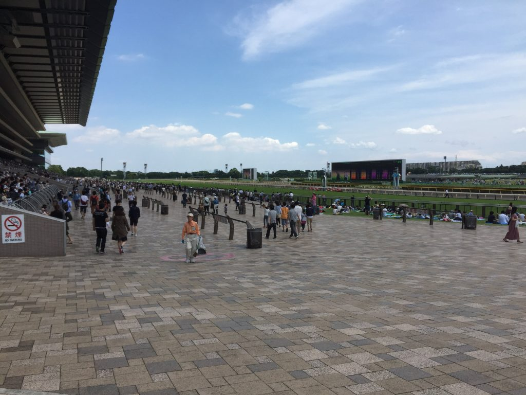 Main racecourse and Fuji View Stand