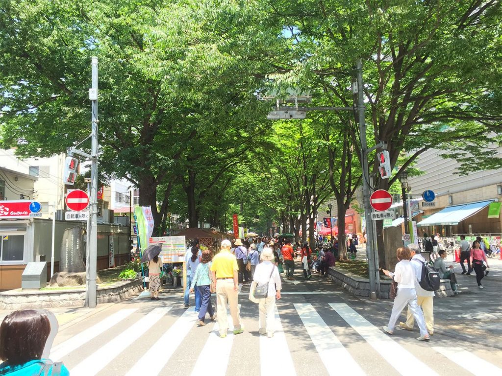 The main street in Fuchu