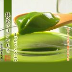 MORIHAN Matcha Green Tea Pudding Mix – Uji no Ochayasan ga Tsukuritakatta Matcha Pudding no Moto