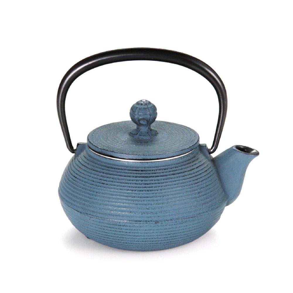 Iwachu Nanbu Tekki Cast Iron Teapot Style 3 Blue Handmade In Iwate