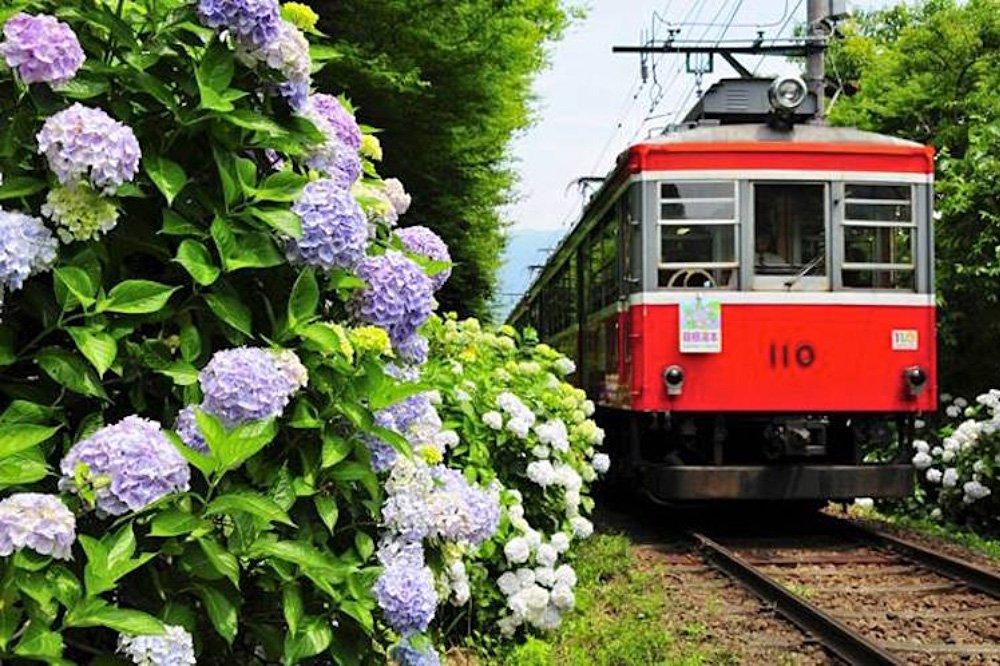 Hakone Tozan Railway (Source: www.jpninfo.com)