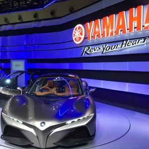 Tokyo Motor Show 2015 20