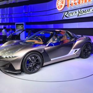 Tokyo Motor Show 2015 21