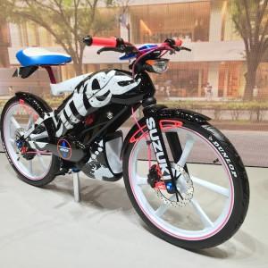 Tokyo Motor Show 2015 234