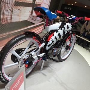 Tokyo Motor Show 2015 235