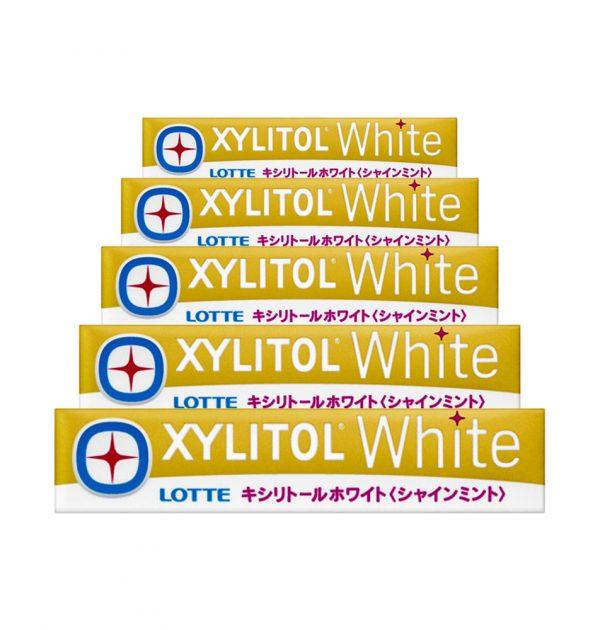 LOTTE XYLITOL White Gum - Shine Mint 14 Pcs x 5 Packs