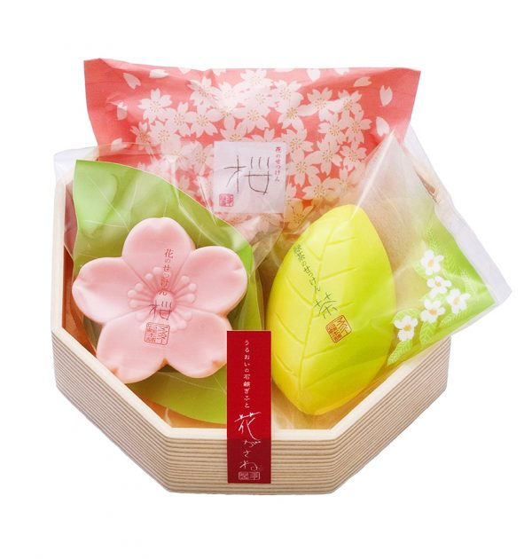MASTER Flower Soap Set - Sakura and Green Tea