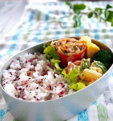 MISHIMA Yukari Shiso Plum Rice Seasoning