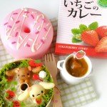NAGATANIEN Japanese Strawberry Curry