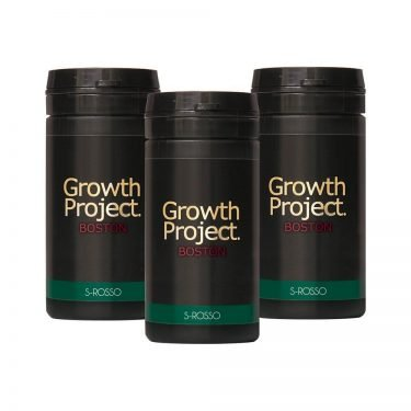 Growth Project Boston