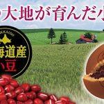 MARUKYO Hokkaido Red Bean Cake Dorayaki - 5 pcs x 2 Bags