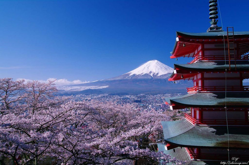 Sengen Shrine Headquarter and Mt. Fuji (www.minkara.carview.co.jp)