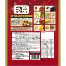 Nissin Gorotto Granola Dried Fruit - 500g