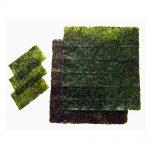 Japanese Seaweed Nori
