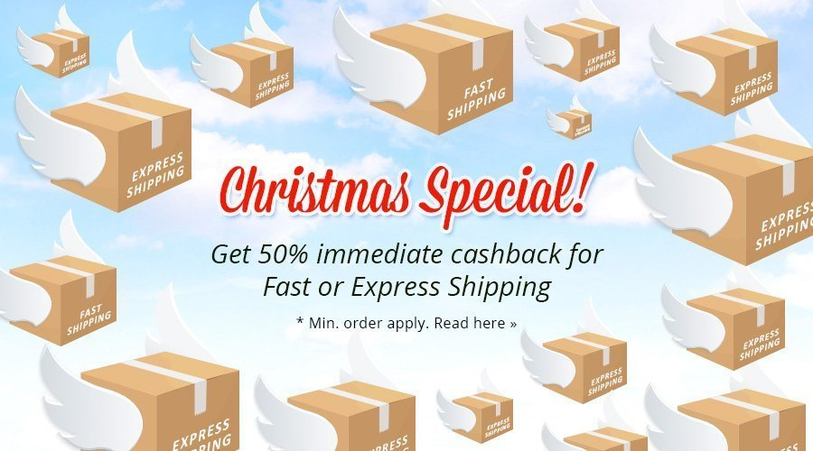 Christmas Shipping Special!
