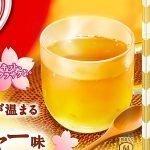 KIT KAT Sakura Ginger - Available Only in Japan & Limited Time