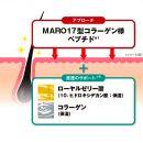 MARO 17 Collagen Shampoo Perfect Wash for Men