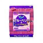 Hamada Healthy Club Blueberry Wafers Made in Japan