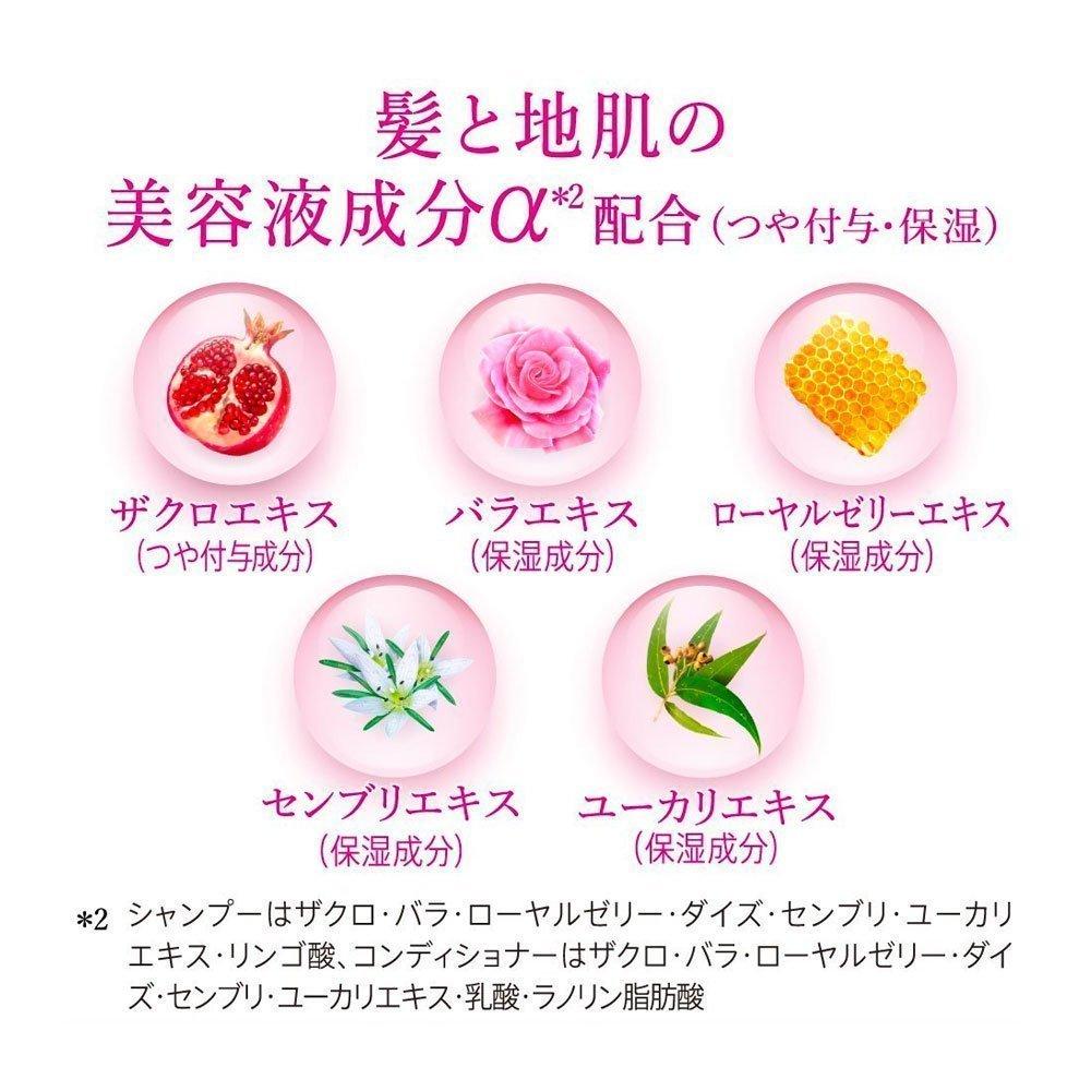 Kao Segreta Shampoo 360ml Made In Japan Takaski Com