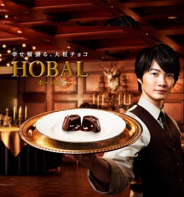 GLICO Hobal Caramel Sauce Chocolate Limited Edition Made in Japan