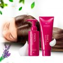 FANCL Volume Up Shampoo Treatment Set Made in Japan