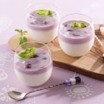 HOUSE Lactic Acid Bacteria Fruit Berry Pudding Dessert Made in Japan