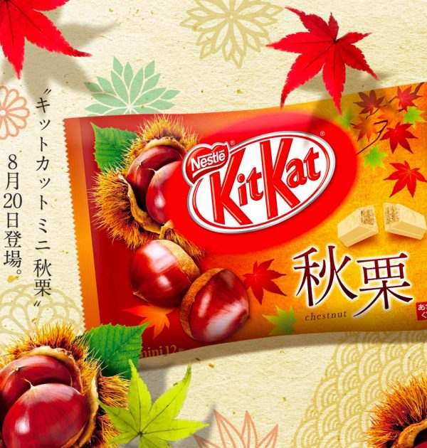 Kit Kat Premium Chestnuts Limited Seasonal Special Edition Made in Japan