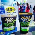 Meiji SAVAS Pro Recovery Protein Made in Japan