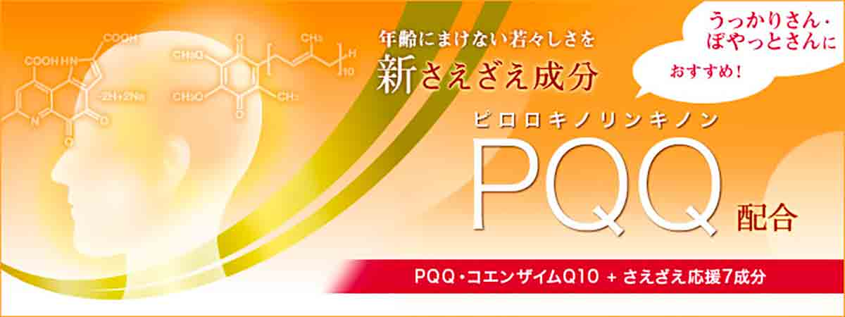 DHC PQQ+Q10 Supplement for Brain Function Made in Japan