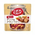 Kit Kat Chocolate Everyday Nuts Cranberry Available Only in Japan