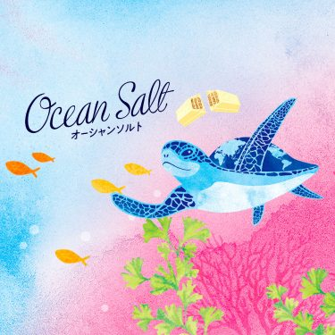 KIT KAT Ocean Salt Origami Sea Animals Made in Japan