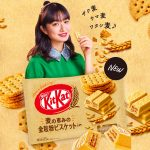 KIT KAT Mini Whole Grain Biscuits in Made in Japan